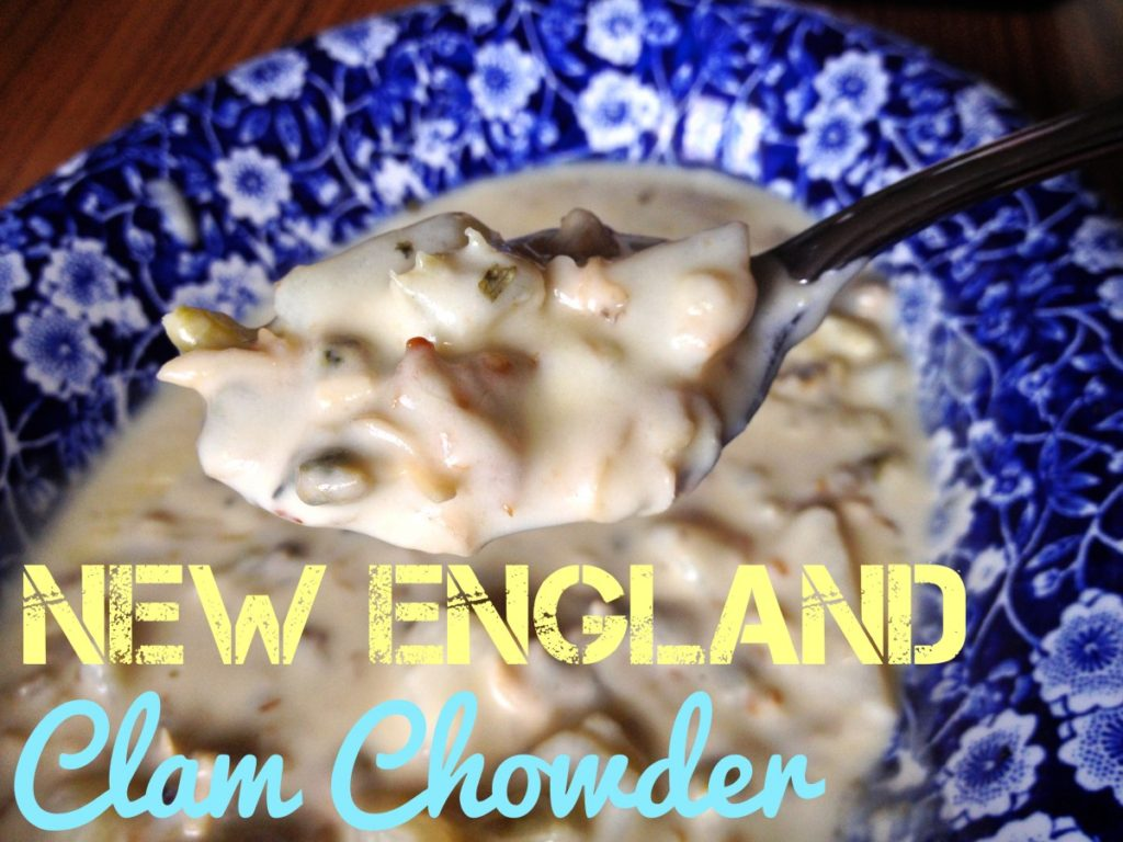 Can Dogs Eat New England Clam Chowder